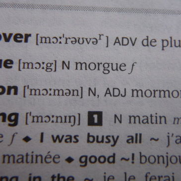 Only In A French Dictionary